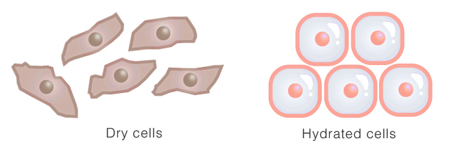 Hyaluronic Acid skinboosters